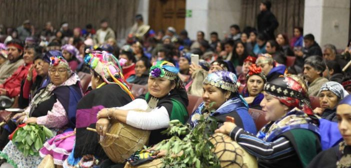 Leaders Declare Autonomous Mapuche Government In National Congress